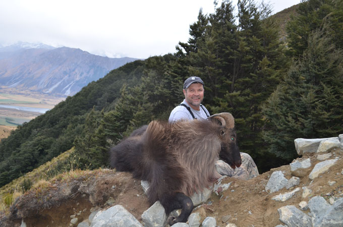 Bull Tahr Hunting in New Zealand