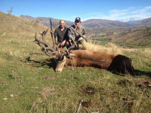 Hunt for Gold Stags with old & bold Guides Telford Hunting