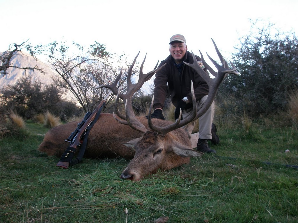Red Stag Trophy Photo