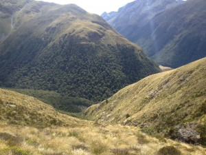 Hunting terrain in New Zealand